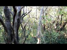 Barrancas de Melilla - Patrimonio Natural - Mayo/Noviembre 2018.